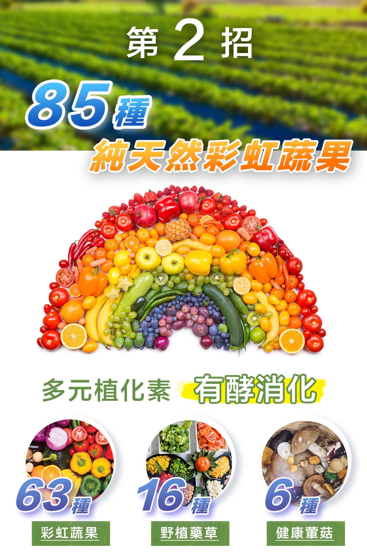 全家力酵素-85種天然蔬果酵素